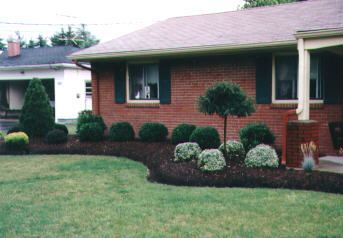 Landscaping and landscape design